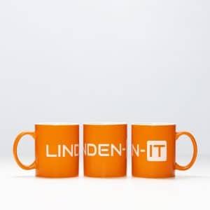 Mogelijkheden bij Linden-IT